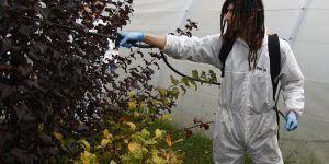 Curso de manipulador de productos fitosanitarios básico
