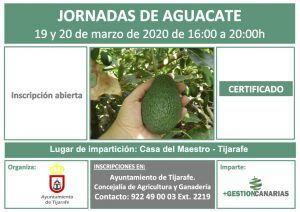 Jornadas sobre el cultivo de aguacate en Tijarafe